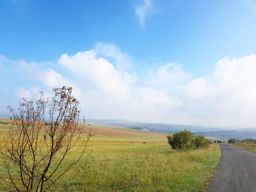 The Road to Kloofzicht