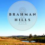 Brahman Hills(2)