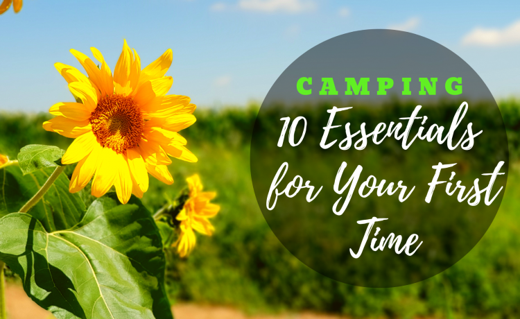 Camping: 10 Essentials for Your First Time